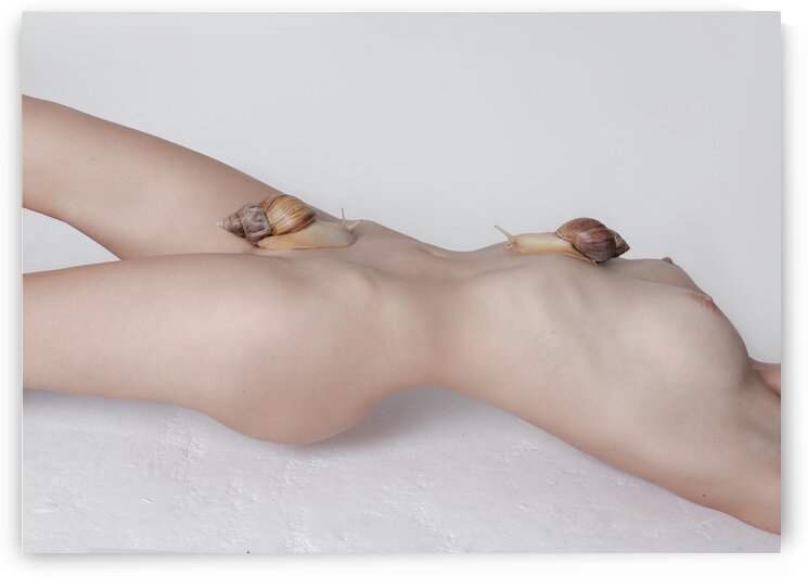 Snail on the slope. Booty.Front view. Nude sex body wallart art print creative tenderness by Nina Grigel