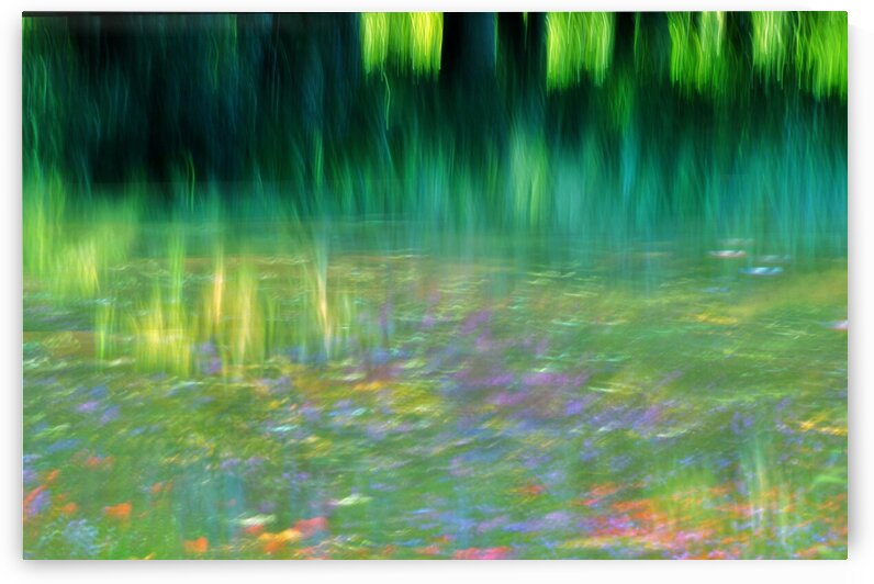 Homage to Monet by Julie Mciver
