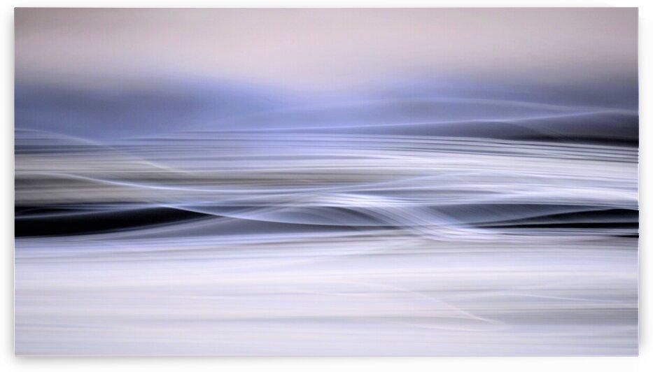 IMG 9011 by Julie Mciver