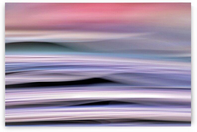 Purple haze by Julie Mciver