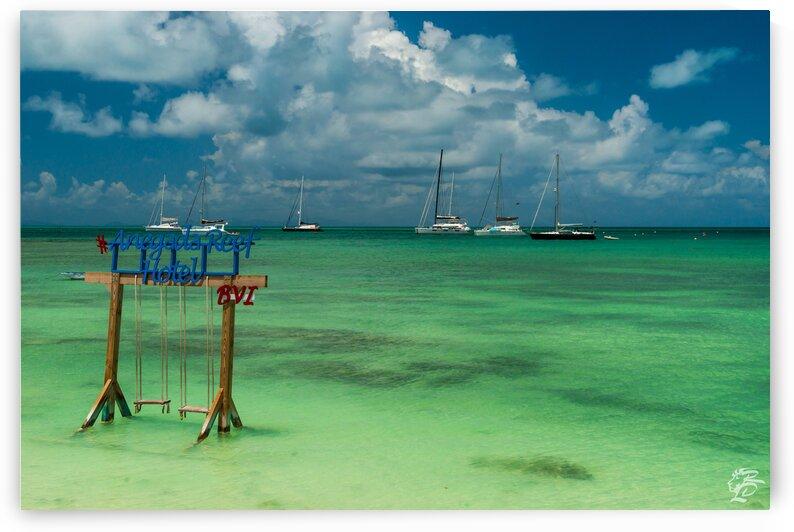 Anegada Reef 2 by Rob Lyons  BVI Photography