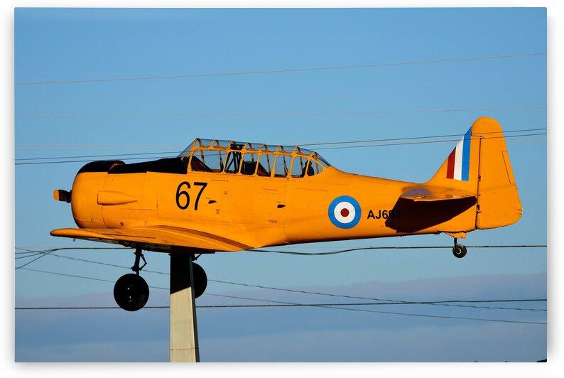 North American AT-6 Harvard II by Paul R  O-Toole