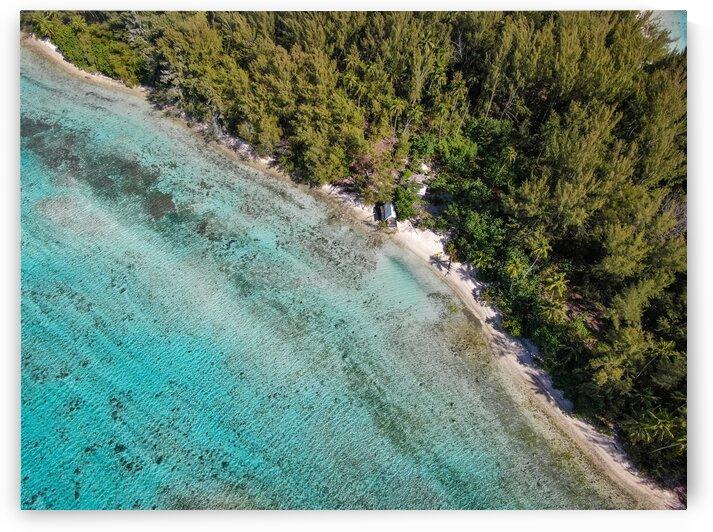 Moorea - Trees to ocean aerial by Samantha Hemery