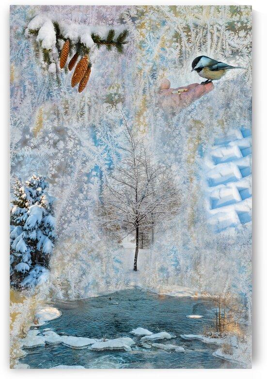 Seasons - Winter by PitoFotos