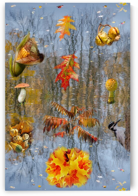 Seasons - Autumn by PitoFotos