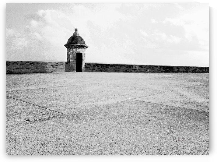 Watchtower  by Efrain Montanez