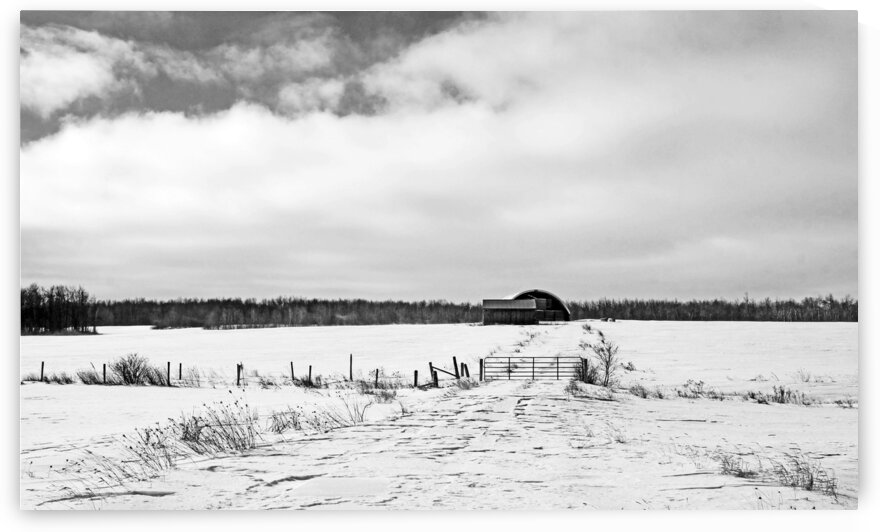 Hay Shelter Black And White by Deb Oppermann