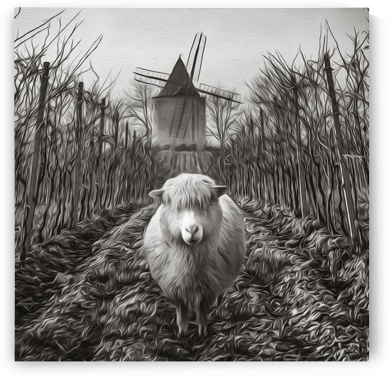 Black and white drawing of a sheep against the background of a vineyard and a mill.    by Ievgeniia Bidiuk