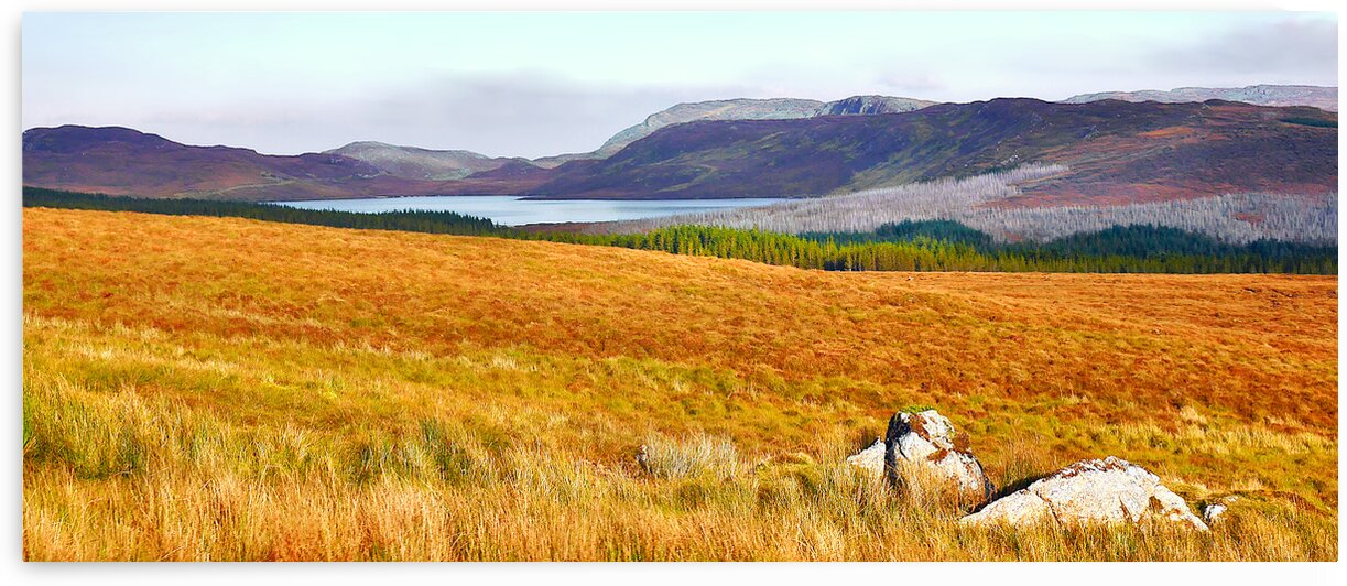 Colours of Autumn - Country Donegal by Lexa Harpell
