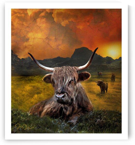highland oxen by nine9nine9 d8v3anz by Nine9Nine9