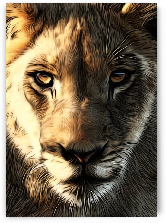 Lions Head by Adrian Brockwell