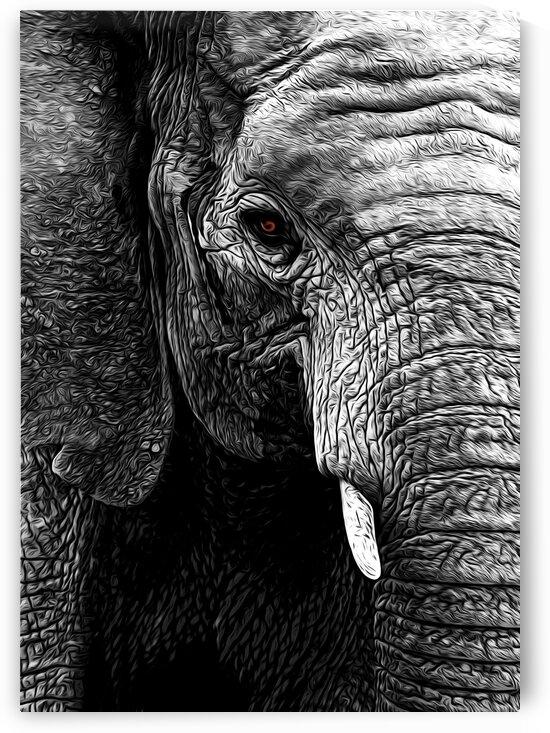 Elephant by Adrian Brockwell