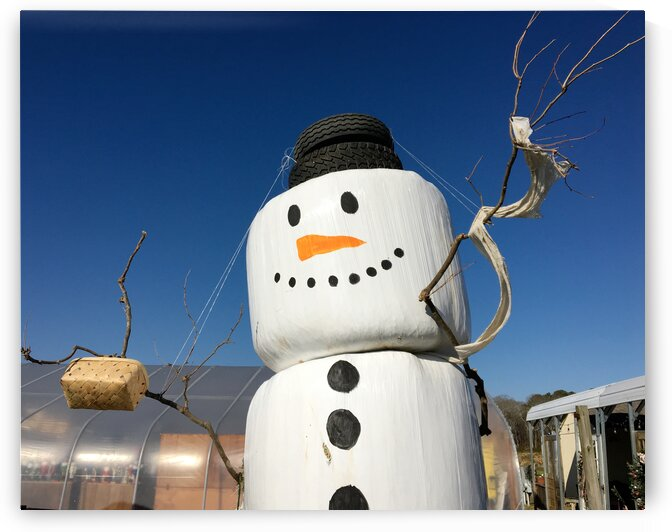 Frosty the Hay Bale Snowman - Horizontal by Ocean City Art Gallery