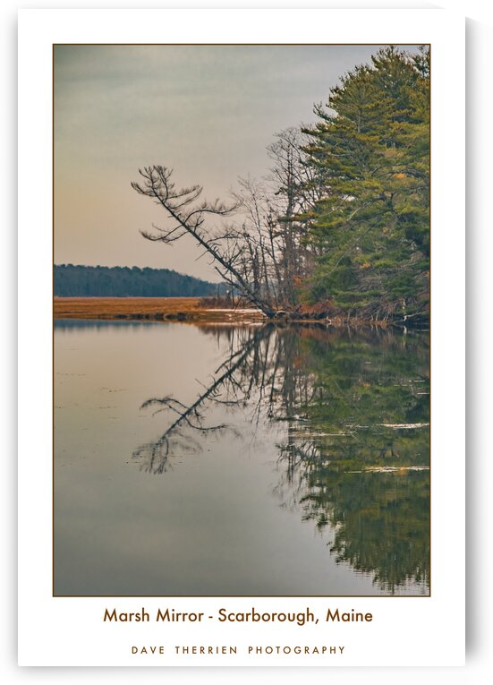 Marsh Mirror - Scarborough Maine by Dave Therrien