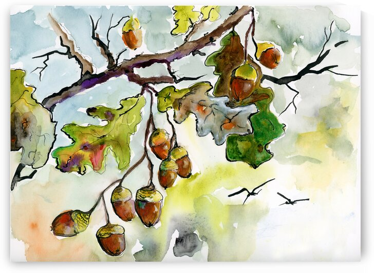Acorns and Oak Leaves  by Ginette Fine Art
