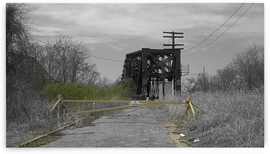 The Lone Bridge by Douglas Harbin