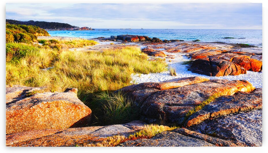 Sunrise on Bay of Fires by Lexa Harpell