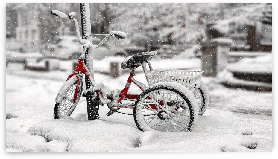 Parked Bike On A Snowy Day In New York City 2021-2-GNY-246 by Vlad Meytin