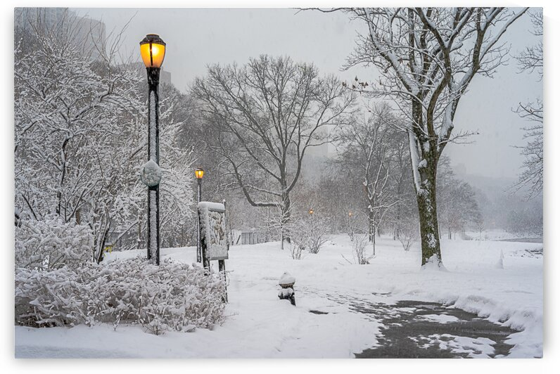 Snow: Fort Washington Lamps by vincenzo