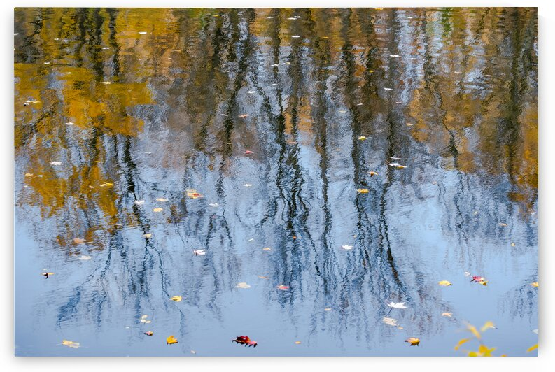 Abstract - Water Reflections by PitoFotos
