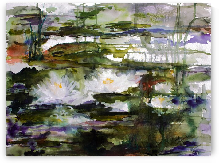 White Waterlilies Wetland Black Water by Ginette Fine Art
