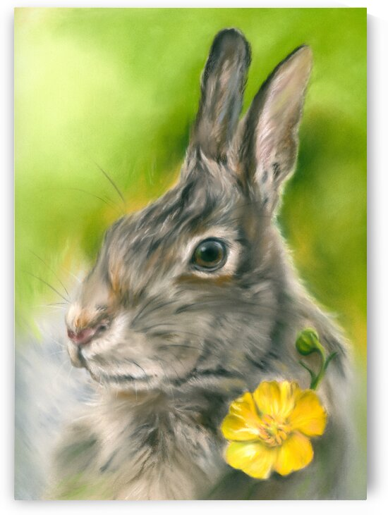 Buttercup Bunny Rabbit by MM Anderson
