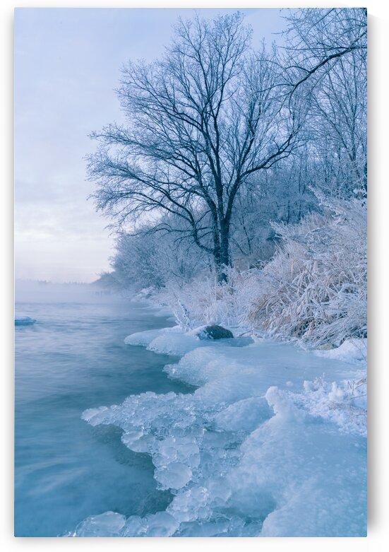 Winter Shore by Michael Squier