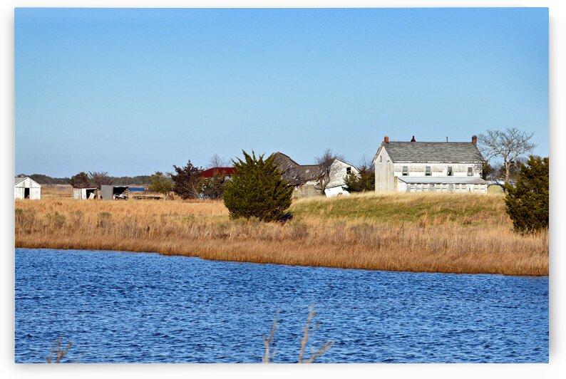 fenwick farm rt 54 0033 by Bill Swartwout Photography