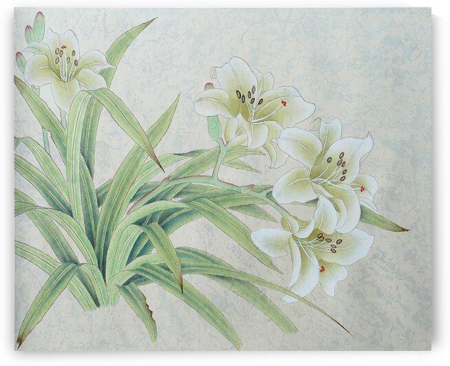 White Lilie - Cally by Birgit Moldenhauer
