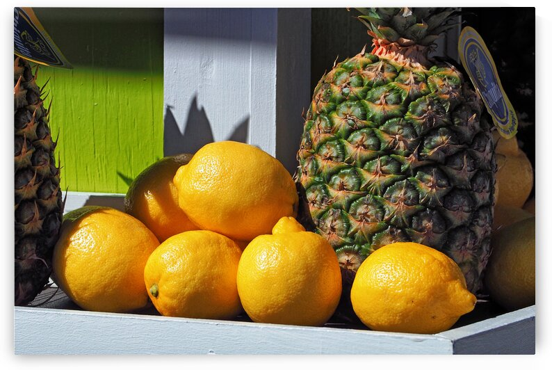 mb lemons pinepples 4160082 by Bill Swartwout Photography