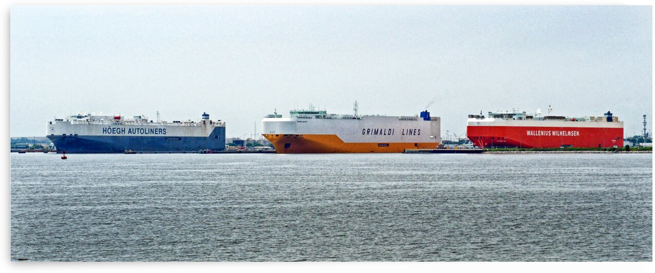 ro ro ships lined up at curtis bay 6080145 by Bill Swartwout Photography