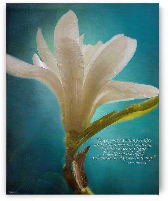 Like Morning Light - Flower Art by Jordan Blackstone by Jordan Blackstone