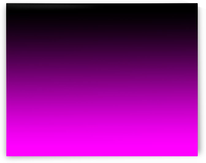 abstract back to the fuchsia 1613348134.2022 by Bill Swartwout Photography