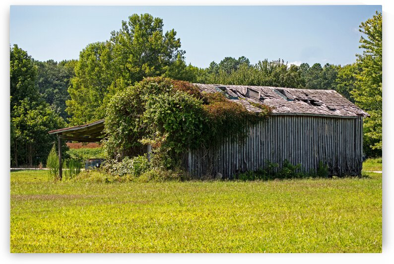 muskrat town rd old crib 7463 by Bill Swartwout Photography