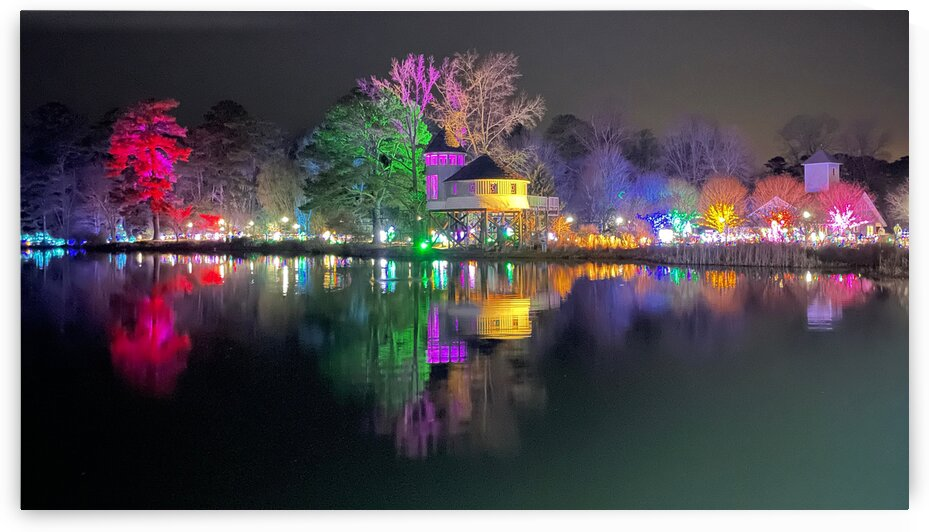 Holiday Lights at Lewis Ginter Botanical Garden by Toni Ivanov Photography