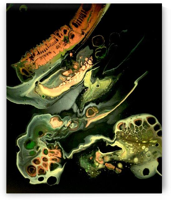 Unidentified Object by Carola James