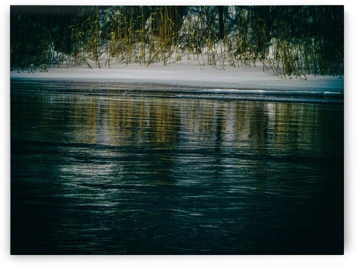 Nature life   20  by Jean-Francois Dupuis