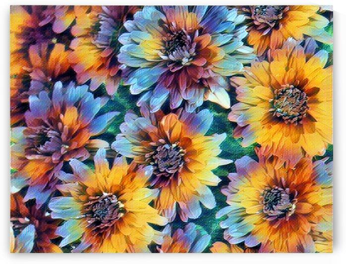 Flowers II by Flodor