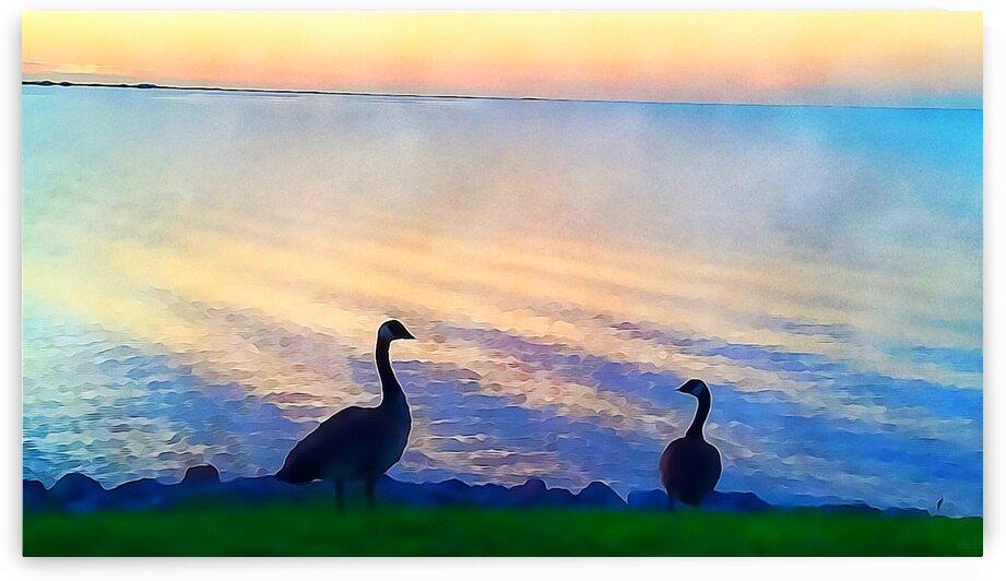 pierce anderson two birds by Pierce Anderson