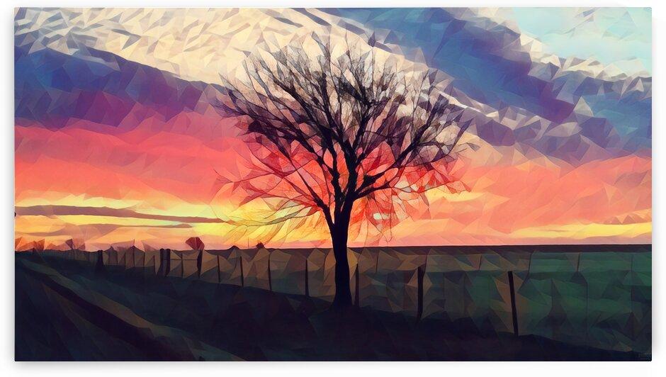 winter tree by Pierce Anderson