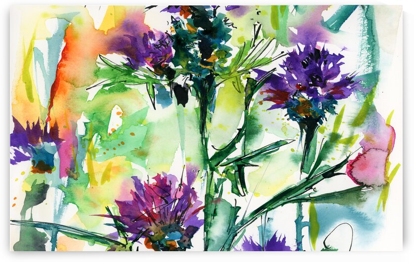 Thistles Floral Watercolors  by Ginette Fine Art