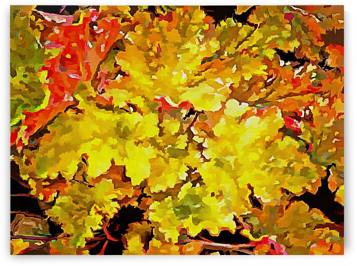 Foliage Pop Art Style by Dorothy Berry-Lound