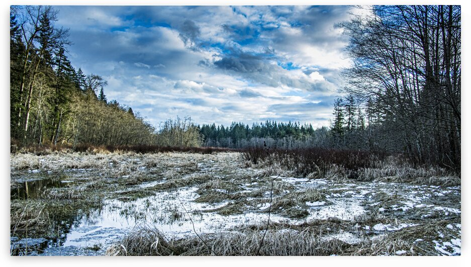 Campbell Valley Meadow  33 of 54  by Michael Snell