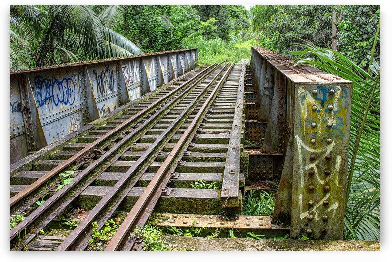 Bridge - XLII by Carlos Wood