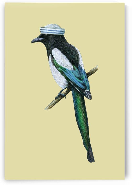 Eurasian magpie by Mikhail Vedernikov