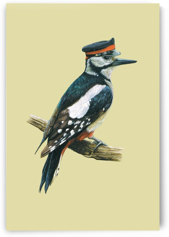 Great spotted woodpecker by Mikhail Vedernikov