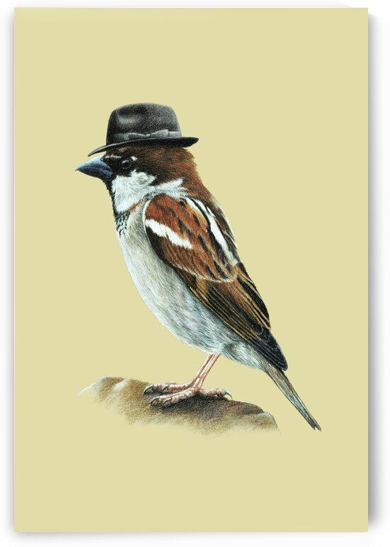 Italian sparrow  by Mikhail Vedernikov