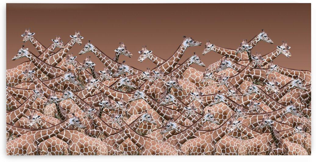 Sea Of Giraffes Panoramic 2x1 by Studio Dalio