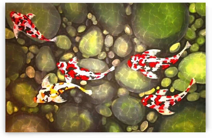 Koi Fish by Ralph Cannell by Ralph Cannell - Art by Cannell