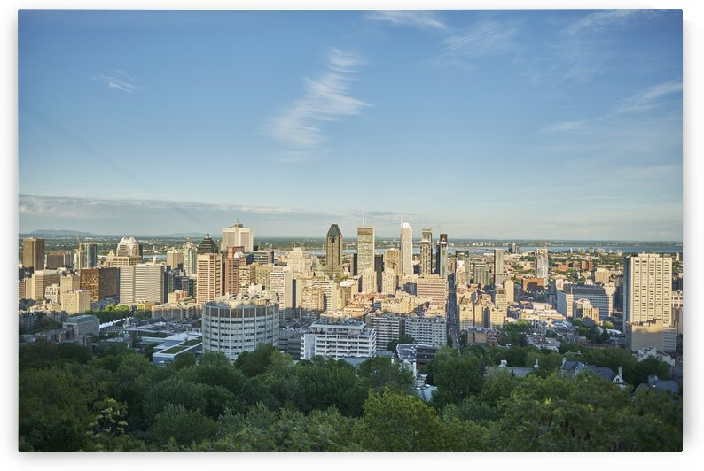 Canadian city during summer Montreal Quebec Canada by Atelier Knox